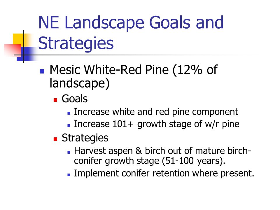 NE Landscape Goals and Strategies Mesic White-Red Pine (12% of landscape) Goals Increase white and red pine component Increase 101+ growth stage of w/r pine Strategies Harvest aspen & birch out of mature birch- conifer growth stage (51-100 years).