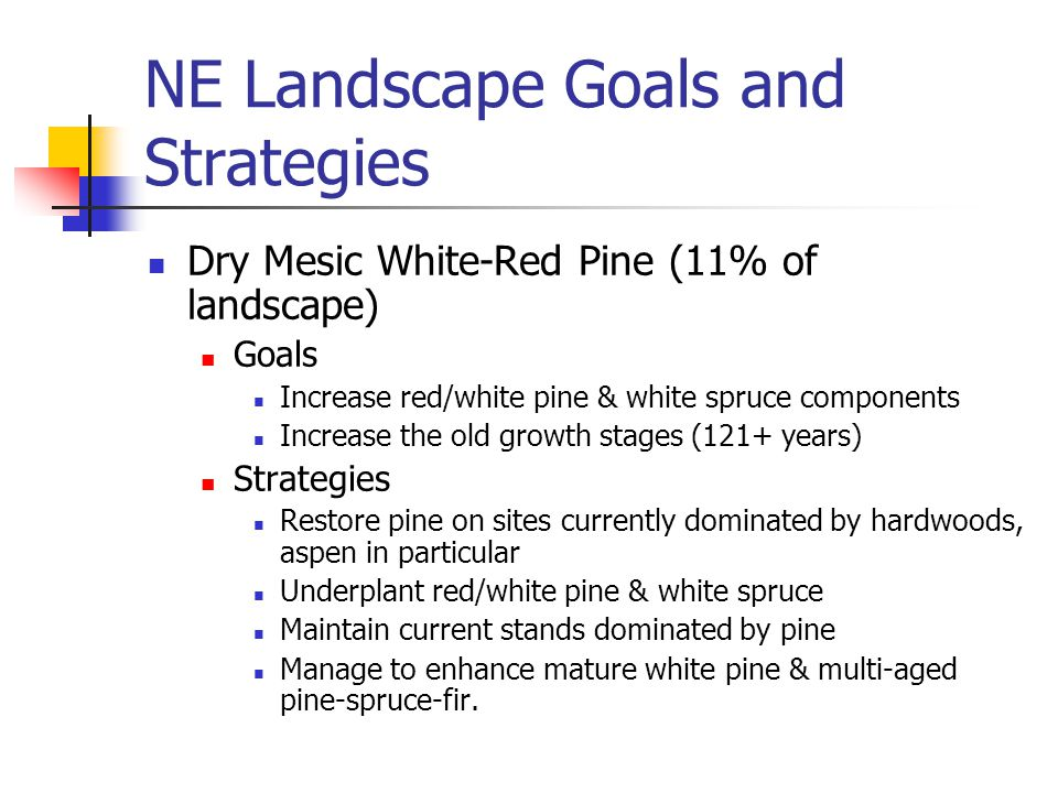 NE Landscape Goals and Strategies Dry Mesic White-Red Pine (11% of landscape) Goals Increase red/white pine & white spruce components Increase the old growth stages (121+ years) Strategies Restore pine on sites currently dominated by hardwoods, aspen in particular Underplant red/white pine & white spruce Maintain current stands dominated by pine Manage to enhance mature white pine & multi-aged pine-spruce-fir.