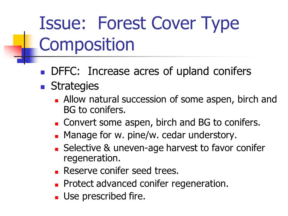 Issue: Forest Cover Type Composition DFFC: Increase acres of upland conifers Strategies Allow natural succession of some aspen, birch and BG to conifers.