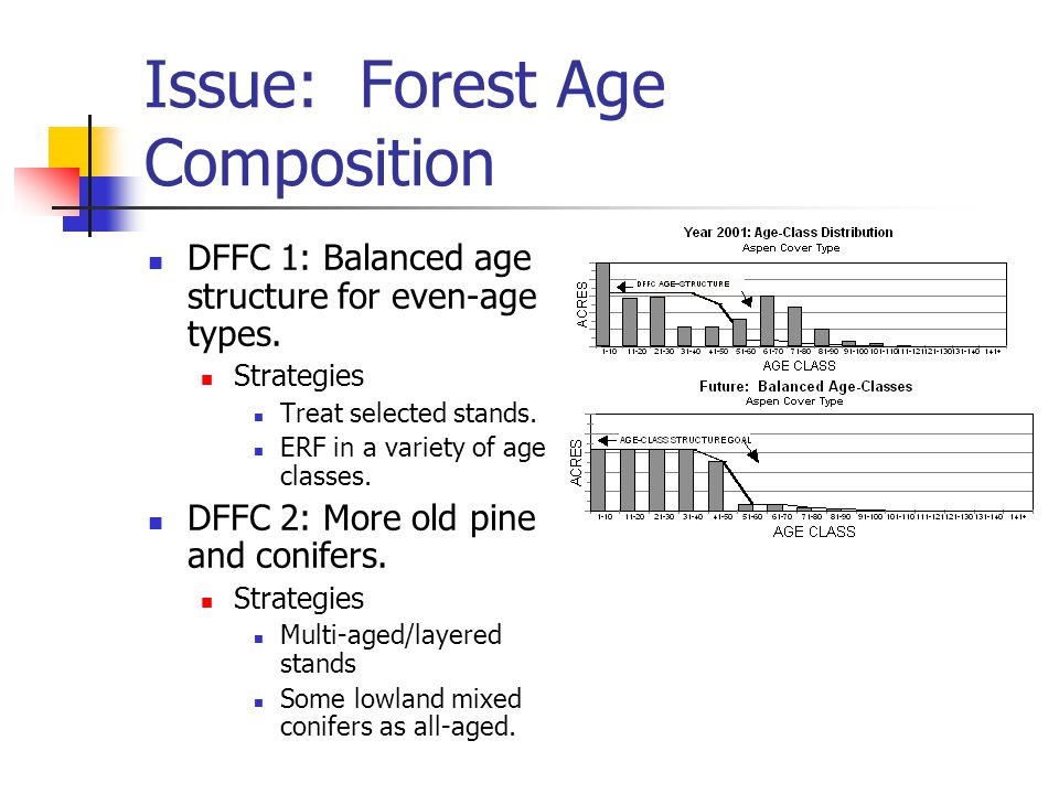 Issue: Forest Age Composition DFFC 1: Balanced age structure for even-age types.