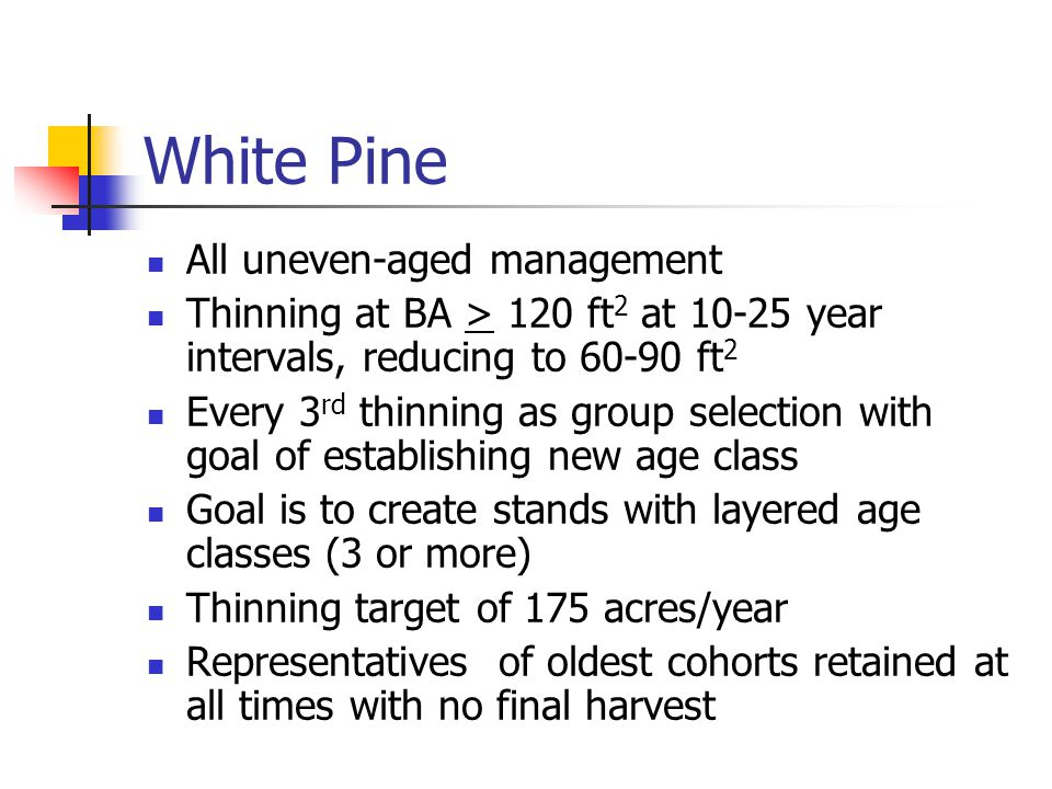 White Pine All uneven-aged management Thinning at BA > 120 ft 2 at 10-25 year intervals, reducing to 60-90 ft 2 Every 3 rd thinning as group selection with goal of establishing new age class Goal is to create stands with layered age classes (3 or more) Thinning target of 175 acres/year Representatives of oldest cohorts retained at all times with no final harvest