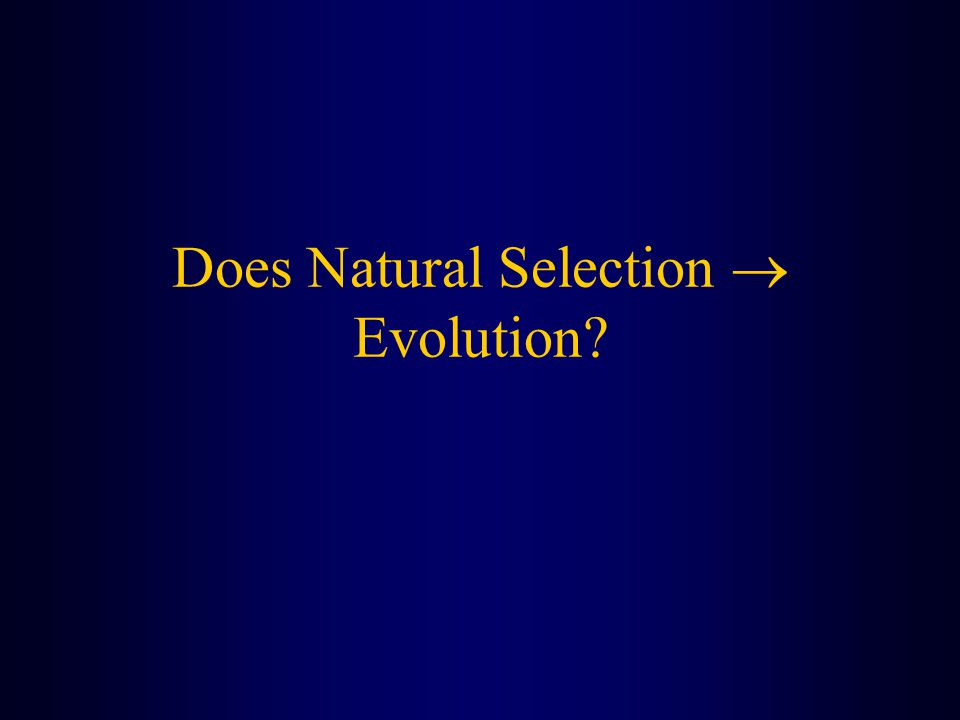 Does Natural Selection  Evolution