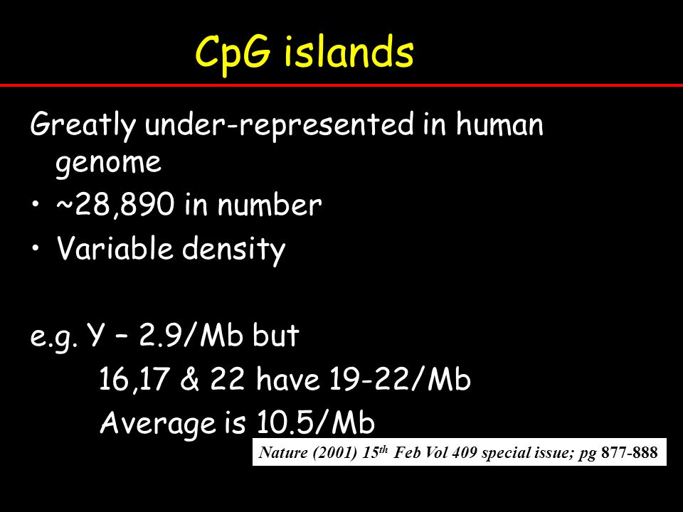 CpG islands Greatly under-represented in human genome ~28,890 in number Variable density e.g. Y – 2.9/Mb but 16,17 & 22 have 19-22/Mb Average is 10.5/