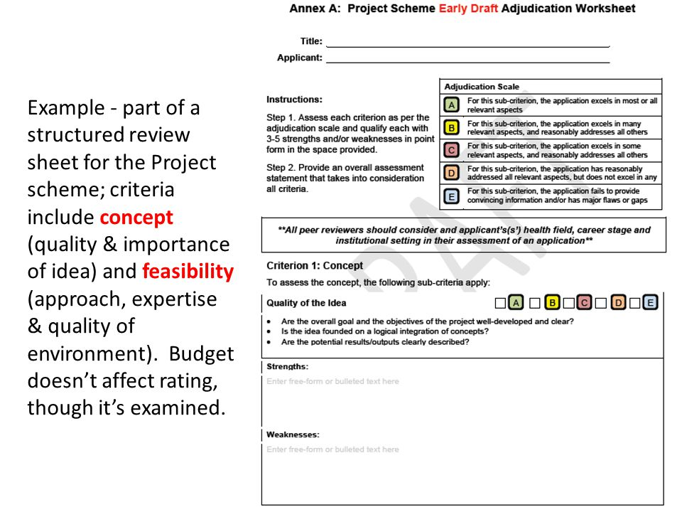 Example - part of a structured review sheet for the Project scheme; criteria include concept (quality & importance of idea) and feasibility (approach, expertise & quality of environment).