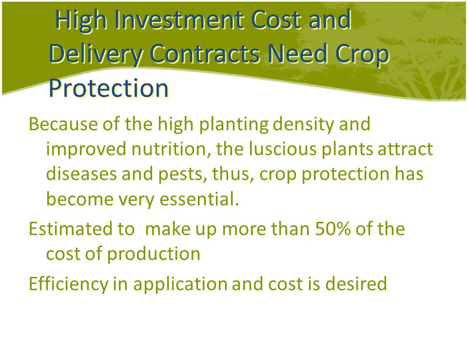 High Investment Cost and Delivery Contracts Need Crop Protection Because of the high planting density and improved nutrition, the luscious plants attract diseases and pests, thus, crop protection has become very essential.