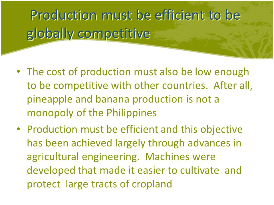 Production must be efficient to be globally competitive The cost of production must also be low enough to be competitive with other countries.