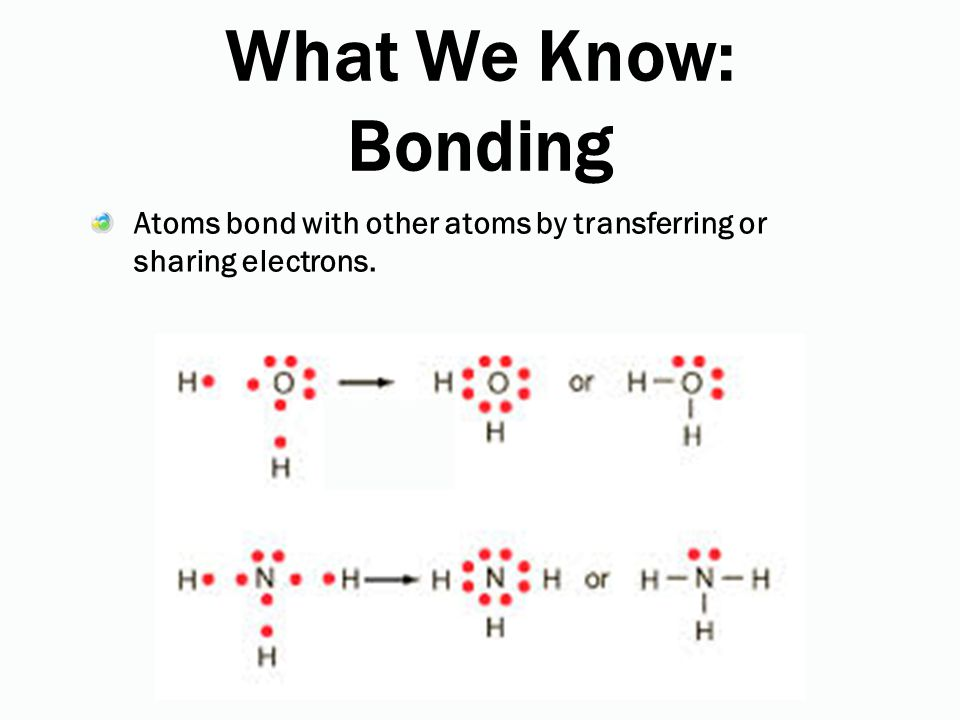 What We Know: Bonding Atoms bond with other atoms by transferring or sharing electrons.