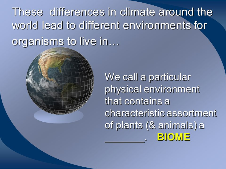 How would you describe our local climate. What is our climate like.
