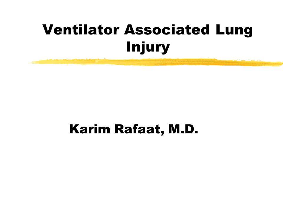Ventilator Associated Lung Injury Karim Rafaat, M.D.