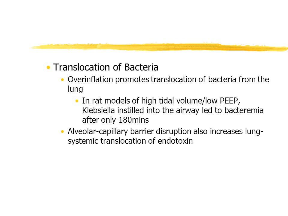 Translocation of Bacteria Overinflation promotes translocation of bacteria from the lung In rat models of high tidal volume/low PEEP, Klebsiella insti
