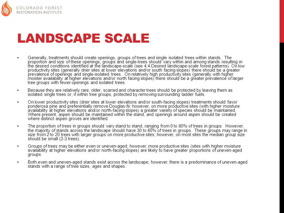 LANDSCAPE SCALE Generally, treatments should create openings, groups of trees and single isolated trees within stands.
