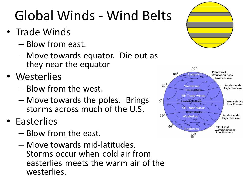 Global Winds - Wind Belts Trade Winds – Blow from east. – Move towards equator. Die out as they near the equator Westerlies – Blow from the west. – Mo