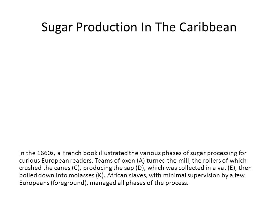 Sugar Production In The Caribbean In the 1660s, a French book illustrated the various phases of sugar processing for curious European readers.