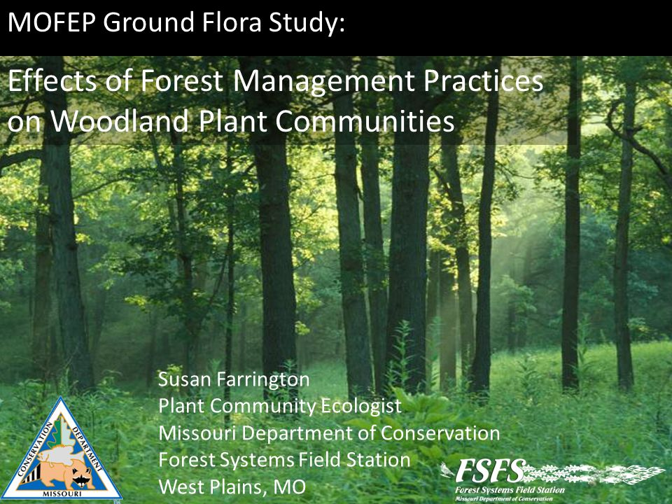 MOFEP Ground Flora Study: Effects of Forest Management Practices on Woodland Plant Communities Susan Farrington Plant Community Ecologist Missouri Department of Conservation Forest Systems Field Station West Plains, MO
