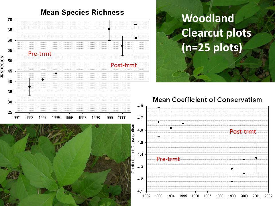 Woodland Clearcut plots (n=25 plots) Pre-trmt Post-trmt Pre-trmt