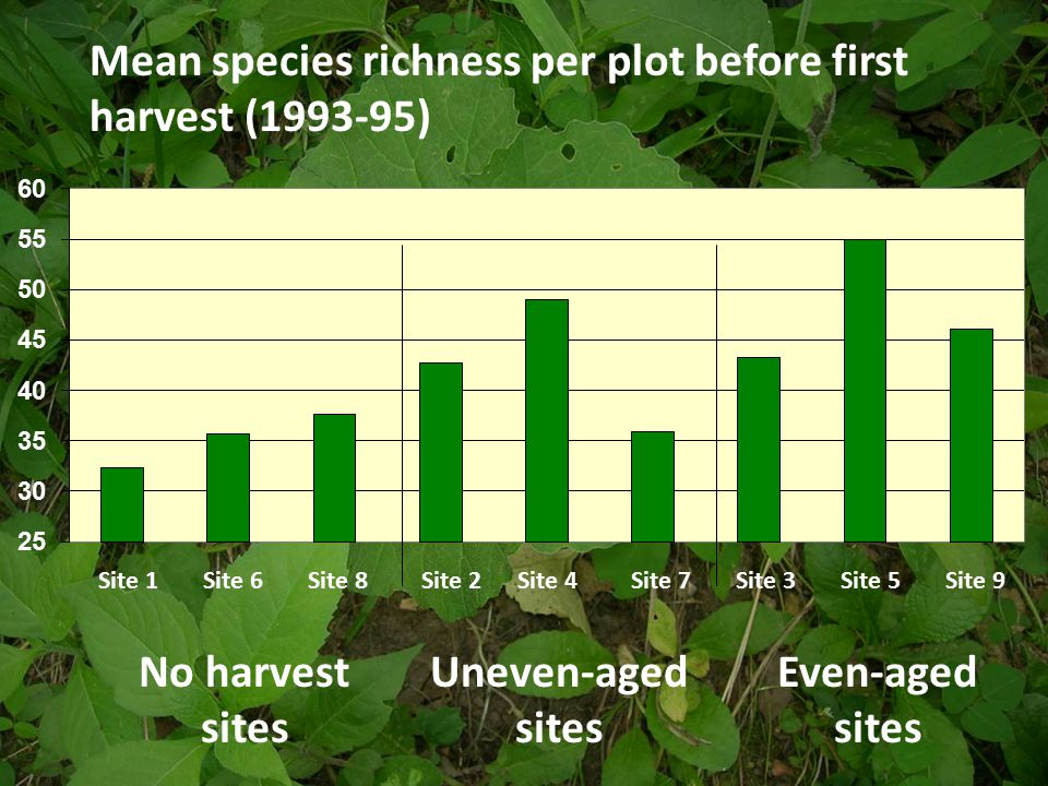 Mean species richness per plot before first harvest (1993-95) No harvest sites Uneven-aged sites Even-aged sites Site 1Site 6Site 8Site 2Site 4Site 7Site 3Site 5Site 9