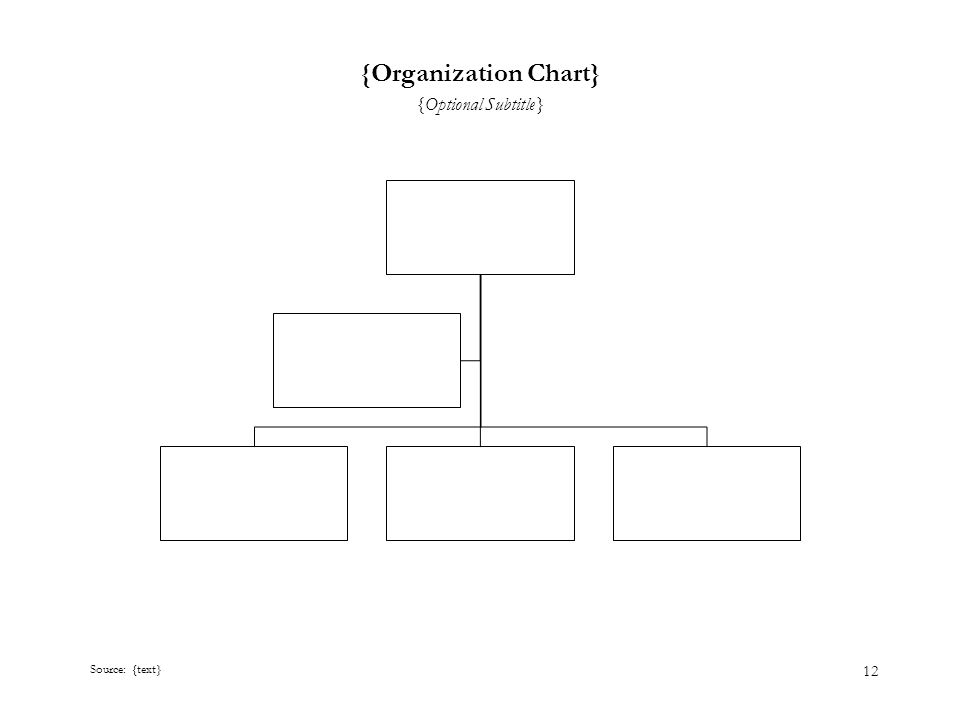 12 {Organization Chart} {Optional Subtitle} Source: {text}
