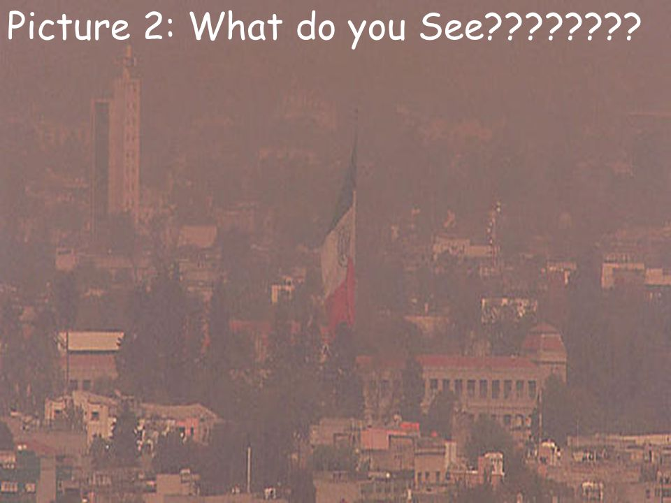 Picture 2: What do you See