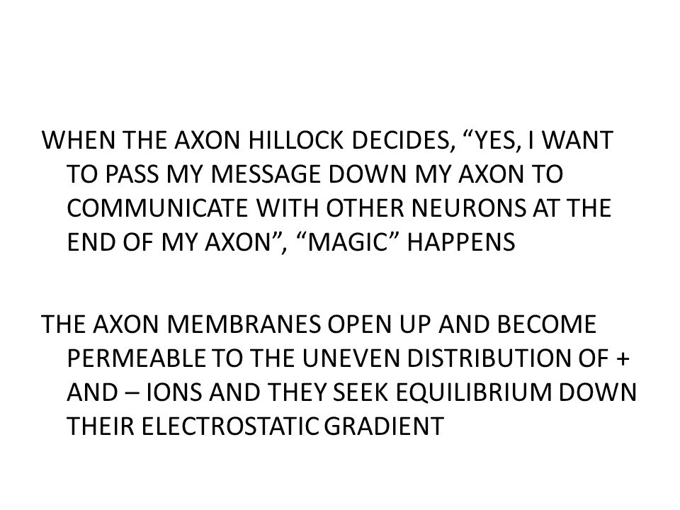 WHEN THE AXON HILLOCK DECIDES, YES, I WANT TO PASS MY MESSAGE DOWN MY AXON TO COMMUNICATE WITH OTHER NEURONS AT THE END OF MY AXON , MAGIC HAPPENS THE AXON MEMBRANES OPEN UP AND BECOME PERMEABLE TO THE UNEVEN DISTRIBUTION OF + AND – IONS AND THEY SEEK EQUILIBRIUM DOWN THEIR ELECTROSTATIC GRADIENT