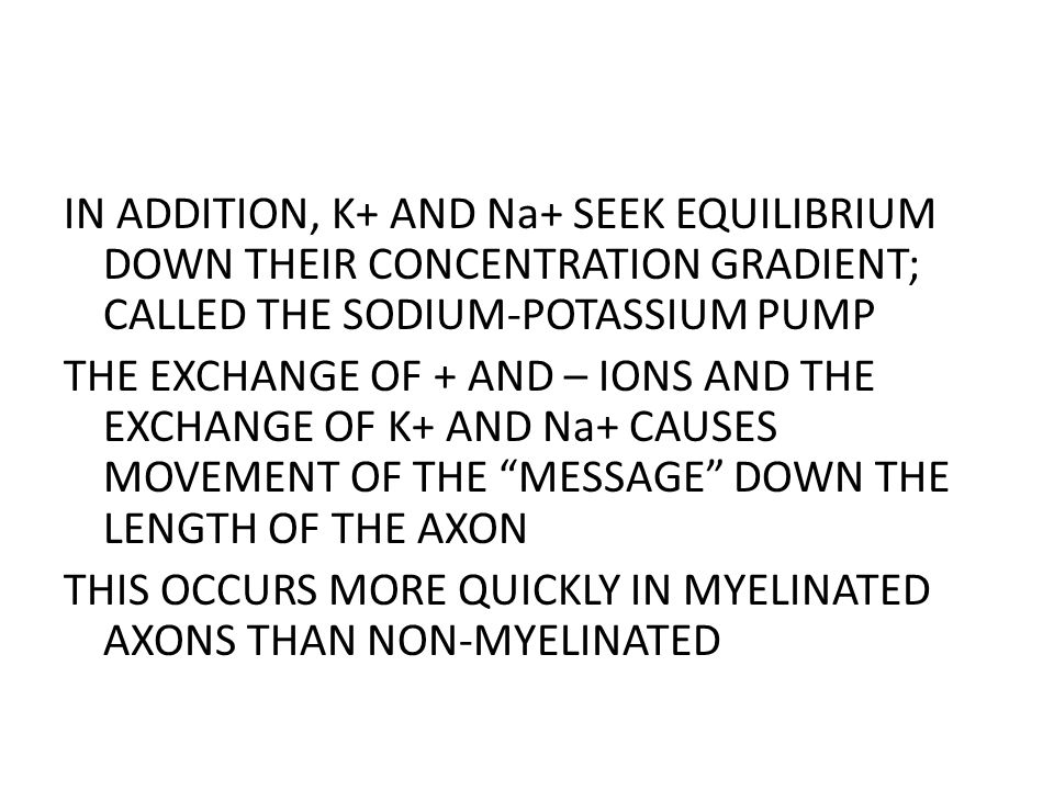 IN ADDITION, K+ AND Na+ SEEK EQUILIBRIUM DOWN THEIR CONCENTRATION GRADIENT; CALLED THE SODIUM-POTASSIUM PUMP THE EXCHANGE OF + AND – IONS AND THE EXCHANGE OF K+ AND Na+ CAUSES MOVEMENT OF THE MESSAGE DOWN THE LENGTH OF THE AXON THIS OCCURS MORE QUICKLY IN MYELINATED AXONS THAN NON-MYELINATED