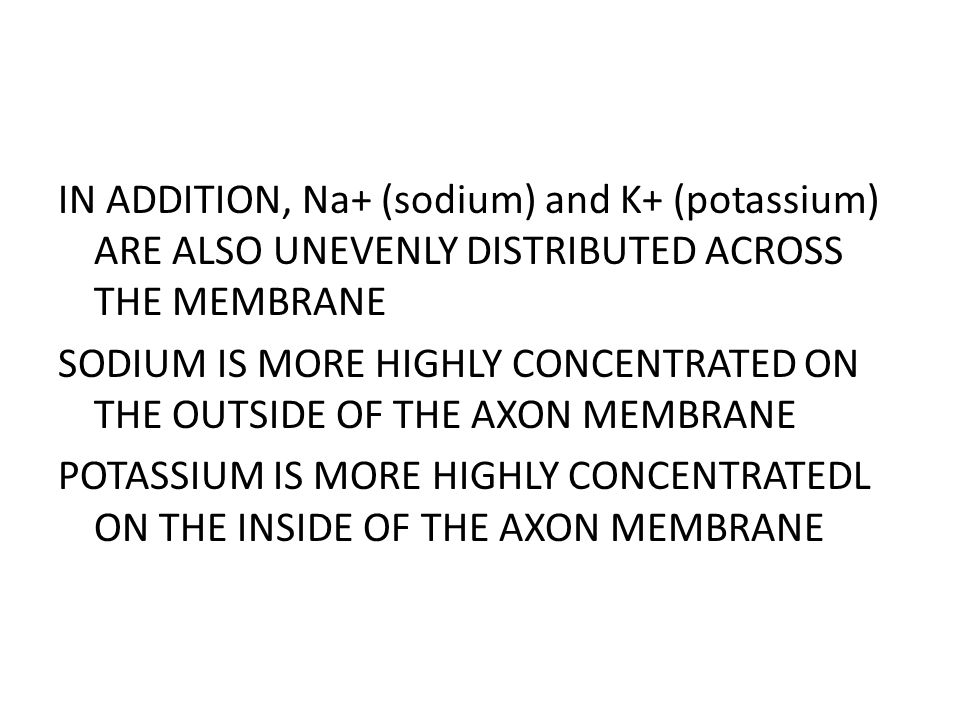 IN ADDITION, Na+ (sodium) and K+ (potassium) ARE ALSO UNEVENLY DISTRIBUTED ACROSS THE MEMBRANE SODIUM IS MORE HIGHLY CONCENTRATED ON THE OUTSIDE OF THE AXON MEMBRANE POTASSIUM IS MORE HIGHLY CONCENTRATEDL ON THE INSIDE OF THE AXON MEMBRANE
