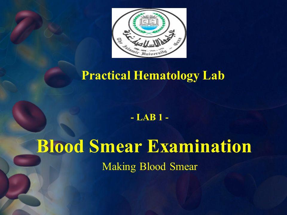 Blood Smear Examination Practical Hematology Lab Making Blood Smear - LAB 1 -