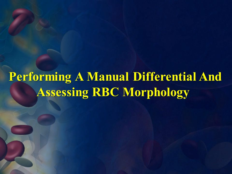 Performing A Manual Differential And Assessing RBC Morphology
