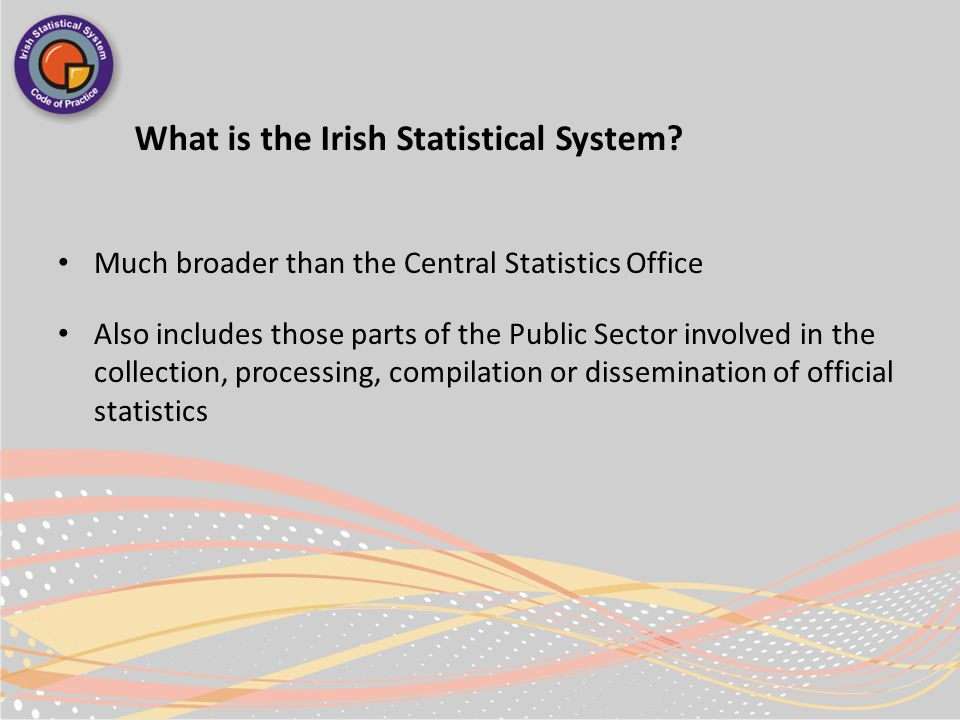 What is the Irish Statistical System.
