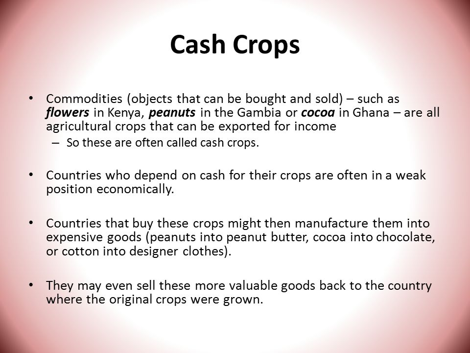 Cash Crops Commodities (objects that can be bought and sold) – such as flowers in Kenya, peanuts in the Gambia or cocoa in Ghana – are all agricultural crops that can be exported for income – So these are often called cash crops.