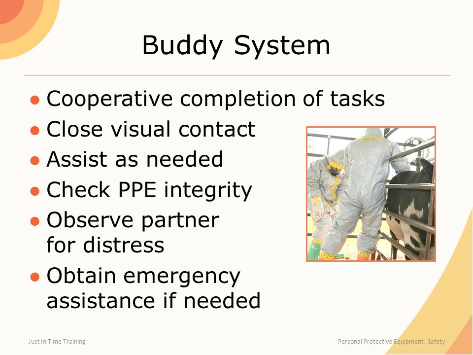 Buddy System ●Cooperative completion of tasks ●Close visual contact ●Assist as needed ●Check PPE integrity ●Observe partner for distress ●Obtain emergency assistance if needed Just In Time Training Personal Protective Equipment: Safety