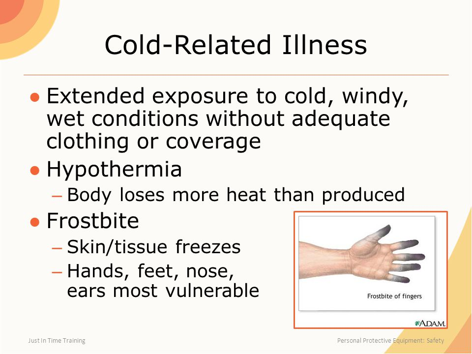 Cold-Related Illness ●Extended exposure to cold, windy, wet conditions without adequate clothing or coverage ●Hypothermia – Body loses more heat than produced ●Frostbite – Skin/tissue freezes – Hands, feet, nose, ears most vulnerable Just In Time Training Personal Protective Equipment: Safety