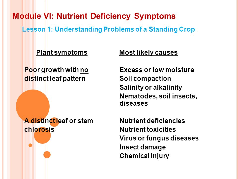 Module VI: Nutrient Deficiency Symptoms Lesson 1: Understanding Problems of a Standing Crop Plant symptoms Most likely causes Poor growth with no Excess or low moisture distinct leaf patternSoil compaction Salinity or alkalinity Nematodes, soil insects, diseases A distinct leaf or stemNutrient deficiencies chlorosis Nutrient toxicities Virus or fungus diseases Insect damage Chemical injury