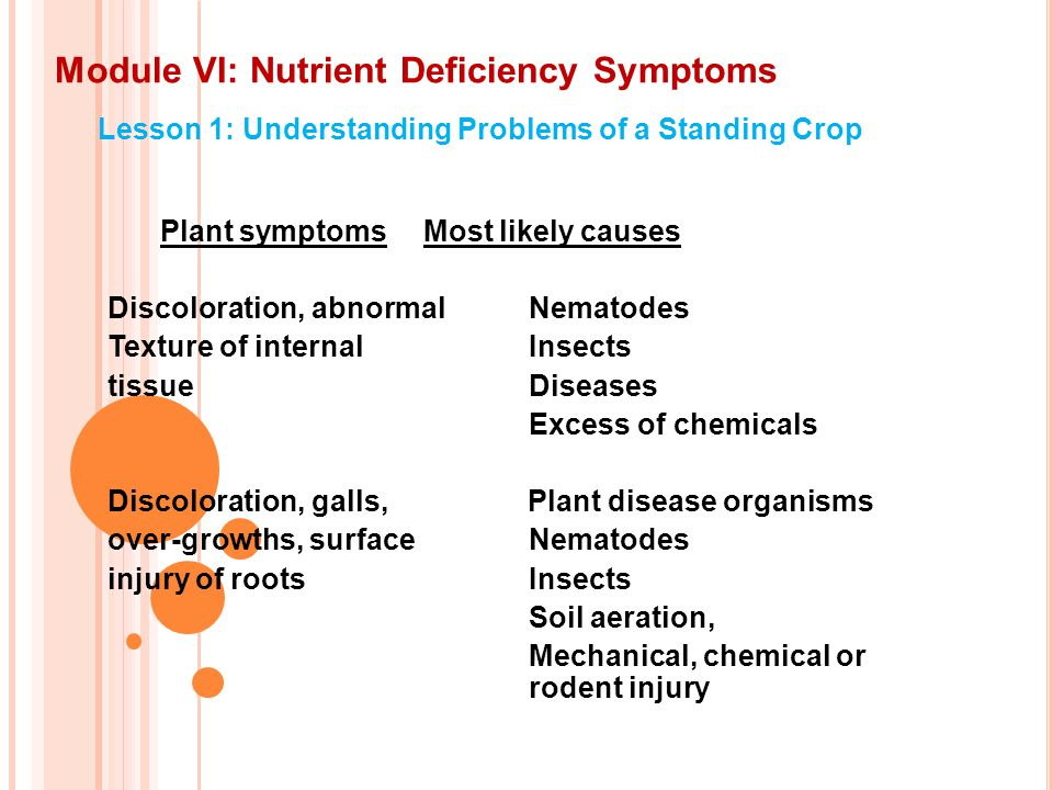 Module VI: Nutrient Deficiency Symptoms Lesson 1: Understanding Problems of a Standing Crop Plant symptomsMost likely causes Discoloration, abnormal Nematodes Texture of internalInsects tissueDiseases Excess of chemicals Discoloration, galls, Plant disease organisms over-growths, surfaceNematodes injury of rootsInsects Soil aeration, Mechanical, chemical or rodent injury