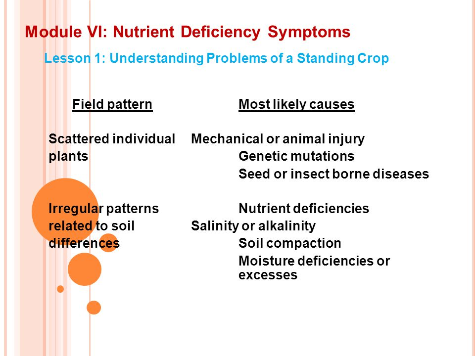 Module VI: Nutrient Deficiency Symptoms Lesson 1: Understanding Problems of a Standing Crop Field patternMost likely causes Scattered individualMechanical or animal injury plantsGenetic mutations Seed or insect borne diseases Irregular patterns Nutrient deficiencies related to soilSalinity or alkalinity differencesSoil compaction Moisture deficiencies or excesses