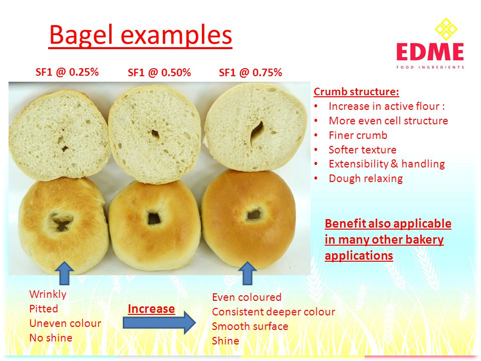 Bagel examples SF1 @ 0.25% SF1 @ 0.50%SF1 @ 0.75% Crumb structure: Increase in active flour : More even cell structure Finer crumb Softer texture Extensibility & handling Dough relaxing Even coloured Consistent deeper colour Smooth surface Shine Wrinkly Pitted Uneven colour No shine Benefit also applicable in many other bakery applications Increase