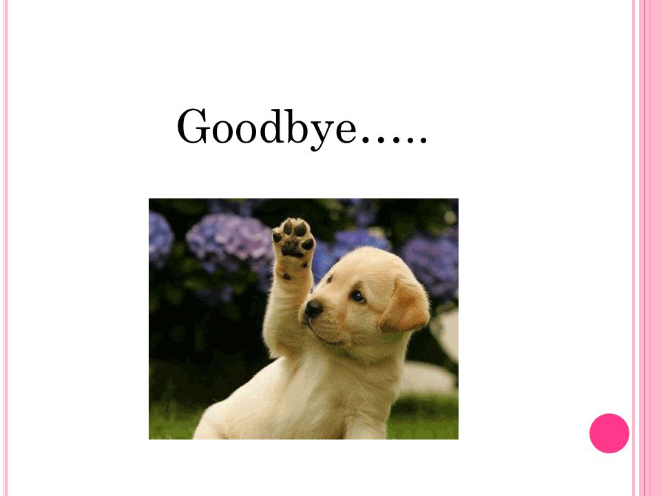 Goodbye…..