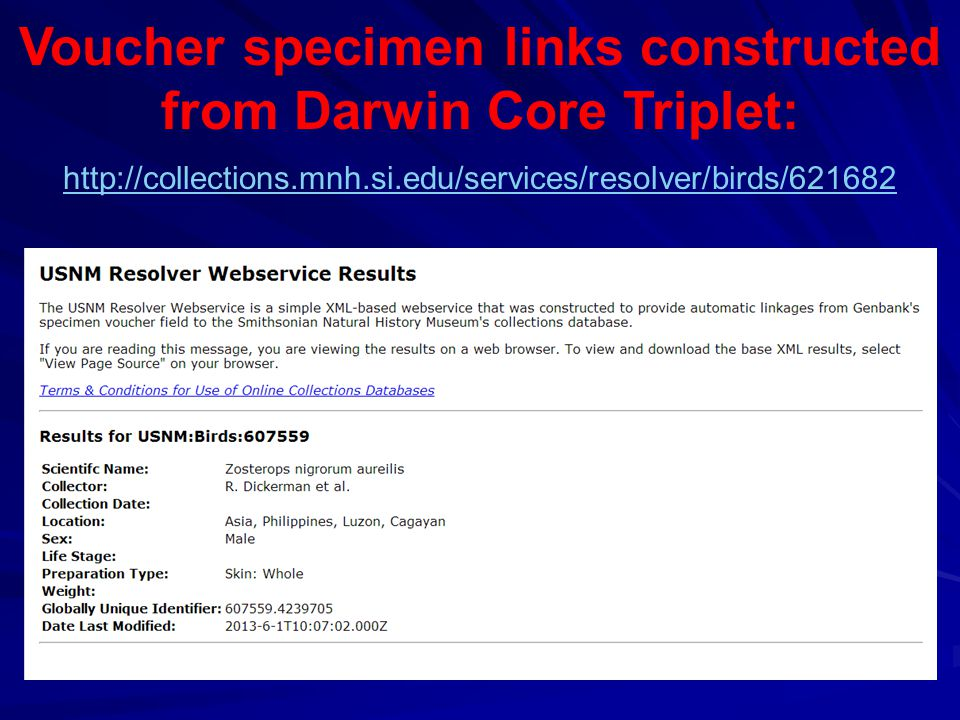 Voucher specimen links constructed from Darwin Core Triplet: http://collections.mnh.si.edu/services/resolver/birds/621682
