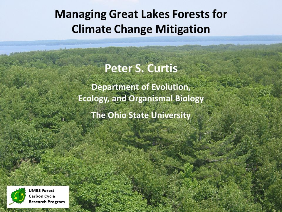 Two Definitions for this Webinar UMBS Forest Carbon Cycle Research Program  Forest Management  If and when to harvest trees.