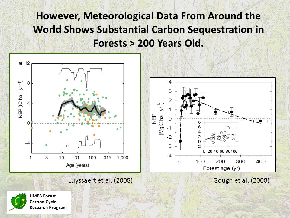 UMBS Forest Carbon Cycle Research Program Gough et al.