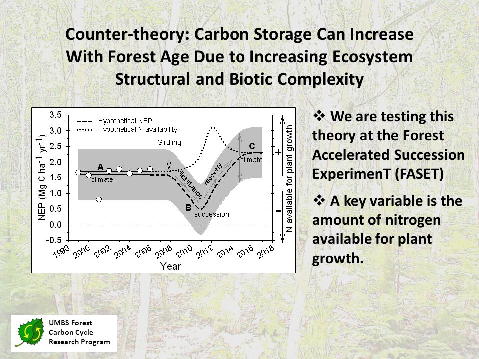 UMBS Forest Carbon Cycle Research Program Counter-theory: Carbon Storage Can Increase With Forest Age Due to Increasing Ecosystem Structural and Biotic Complexity  We are testing this theory at the Forest Accelerated Succession ExperimenT (FASET)  A key variable is the amount of nitrogen available for plant growth.