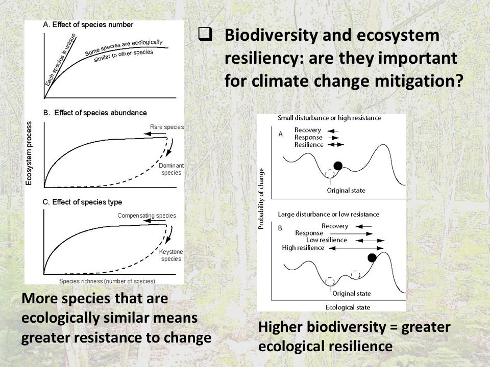  Biodiversity and ecosystem resiliency: are they important for climate change mitigation.