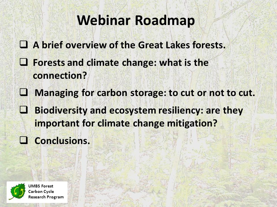 Webinar Roadmap UMBS Forest Carbon Cycle Research Program  A brief overview of the Great Lakes forests.