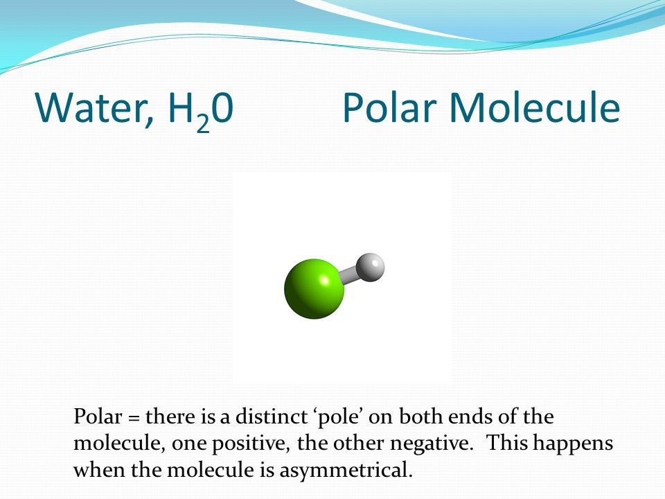 Water, H 2 0 Polar Molecule Polar = there is a distinct 'pole' on both ends of the molecule, one positive, the other negative.