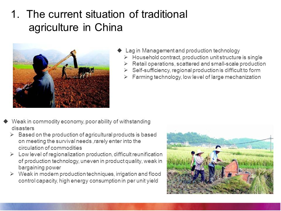 1.The current situation of traditional agriculture in China  Lag in Management and production technology  Household contract, production unit structure is single  Retail operations, scattered and small-scale production  Self-sufficiency, regional production is difficult to form  Farming technology, low level of large mechanization  Weak in commodity economy, poor ability of withstanding disasters  Based on the production of agricultural products is based on meeting the survival needs,rarely enter into the circulation of commodities  Low level of regionalization production, difficult reunification of production technology, uneven in product quality, weak in bargaining power  Weak in modern production techniques, irrigation and flood control capacity, high energy consumption in per unit yield
