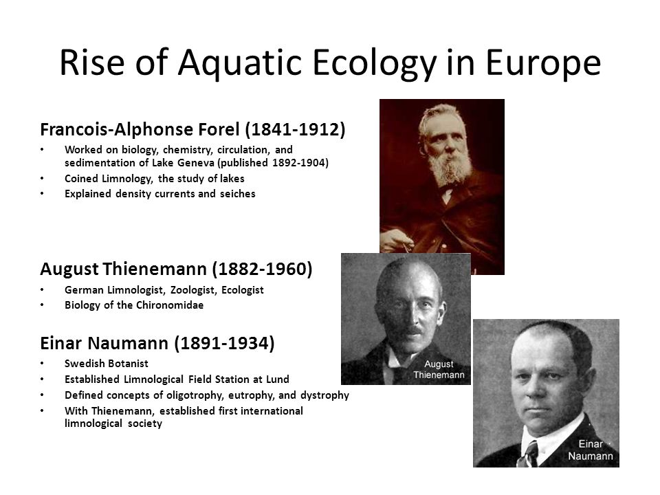 Rise of Aquatic Ecology in US Stephen Forbes (1844-1930) First chief of Illinois Natural History Survey First to study aquatic ecosystems The Lake as a Microcosm (1887) Jacob Reighard (1861-1942) University of Michigan In charge of Michigan Fish Commission Then, director of biological survey of the Great Lakes Edward Birge (1851-1950) University of Wisconsin-Madison Together with Juday pioneered methods for the study of lakes and streams Together they did much work on plankton Chancey Juday (1871-1944) University of Wisconsin-Madison, hired by Birge to study Lake Mendota A founder of Limnological Society of America Birge Juday