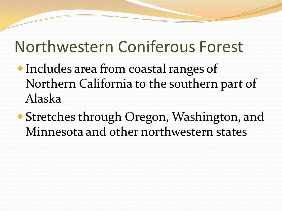 Northwestern Coniferous Forest Includes area from coastal ranges of Northern California to the southern part of Alaska Stretches through Oregon, Washington, and Minnesota and other northwestern states