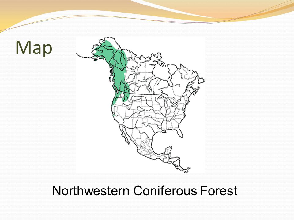 Map Northwestern Coniferous Forest
