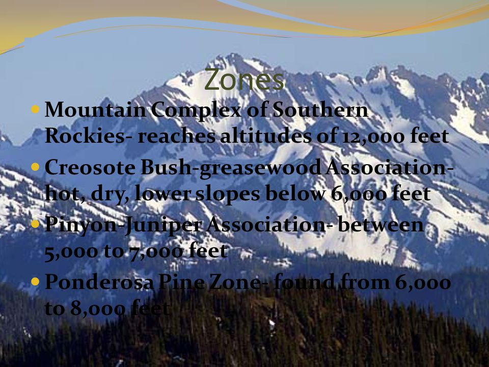 Zones Mountain Complex of Southern Rockies- reaches altitudes of 12,000 feet Creosote Bush-greasewood Association- hot, dry, lower slopes below 6,000 feet Pinyon-Juniper Association- between 5,000 to 7,000 feet Ponderosa Pine Zone- found from 6,000 to 8,000 feet
