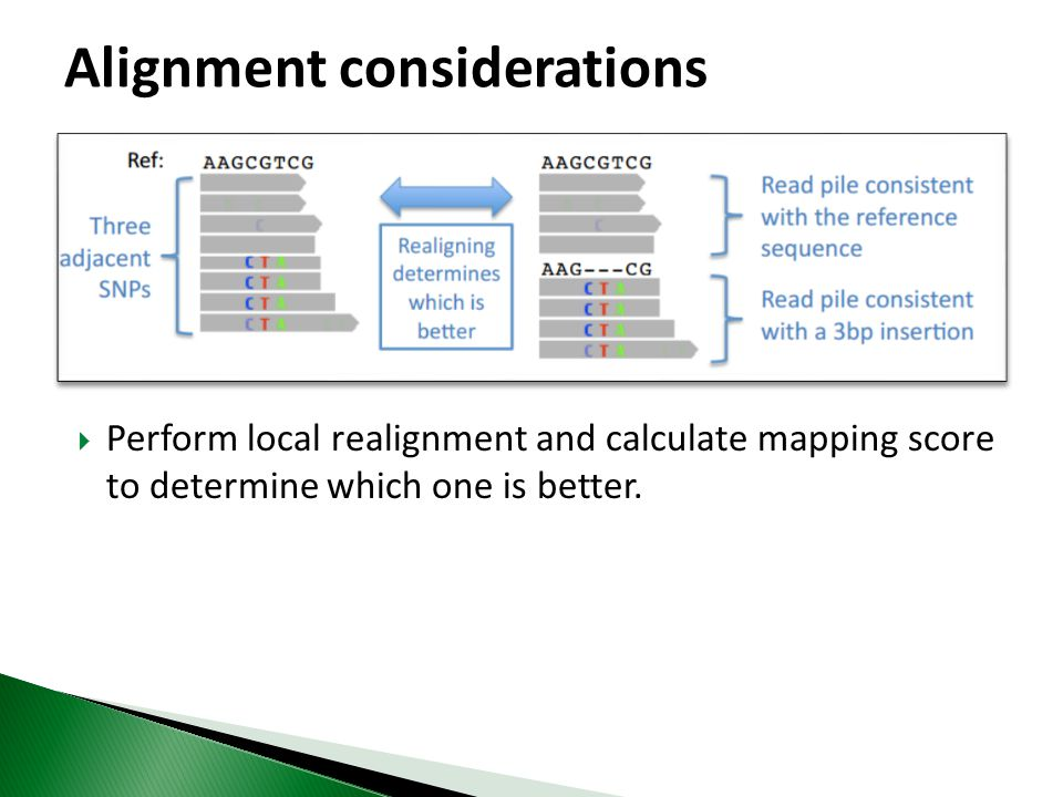  Perform local realignment and calculate mapping score to determine which one is better.