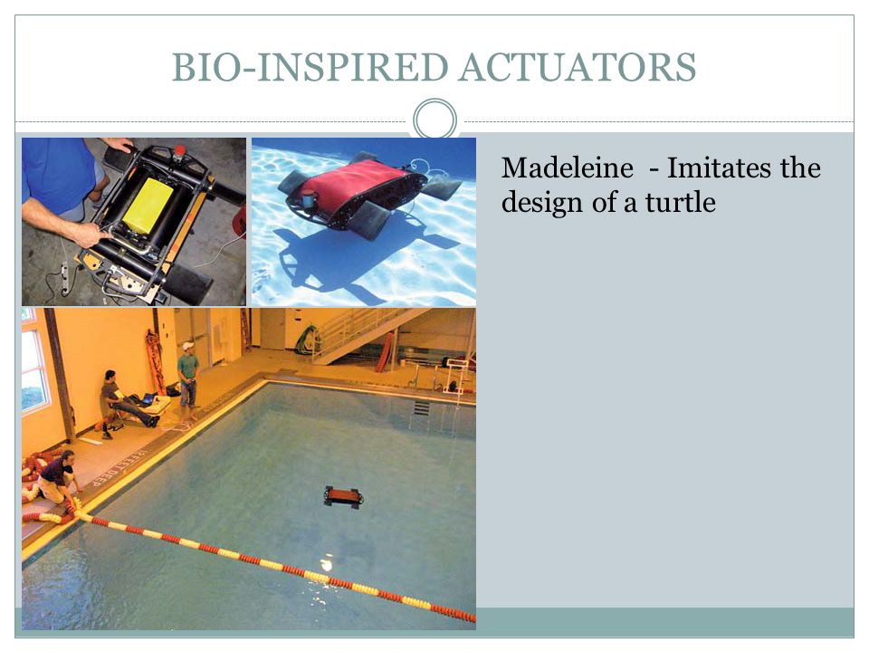 BIO-INSPIRED ACTUATORS Madeleine - Imitates the design of a turtle